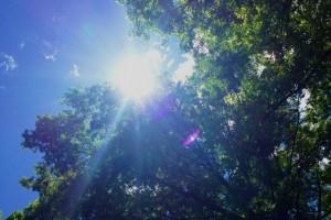 Sunshine in the glorious Adirondacks (June 27, 2012)