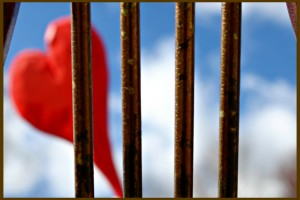 """Heart behind bars"" photo by Donna Smaldone"
